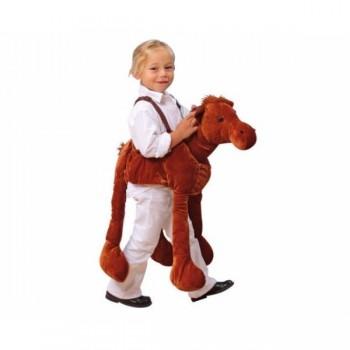 Costum călăreț